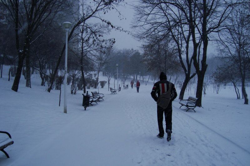 snowing-in-the-park-1