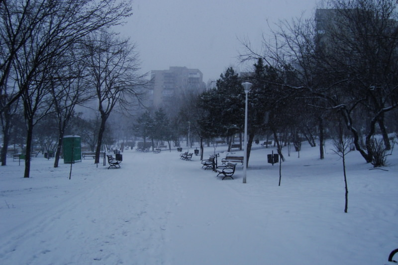 snowing-in-the-park-2